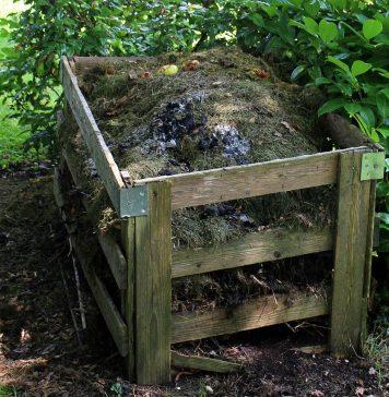 contenedor de compost