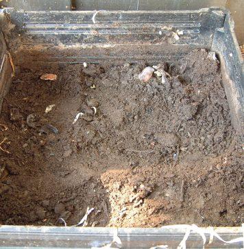 estructura de compost
