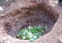 fosa de compost